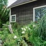 2Shimizu_Garden_Lewes150x150.jpg
